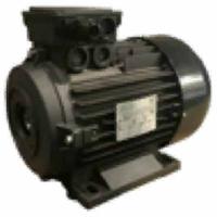 Электродвигатель H100