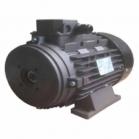 Электродвигатель H132 (7.5кВт)